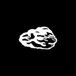 Freimaurer Symbole: Der raue Stein - das Freimaurer-Symbol für die eigene, unvollkommene Persönlichkeit, mit Macken, Ecken und Kanten, an der es mit den symbolischen Werkzeugen der Freimaurerei zu Arbeiten gilt